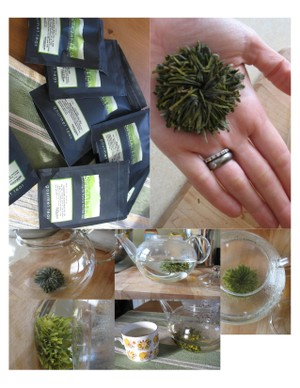 Diary_of_a_tea_anemone_1